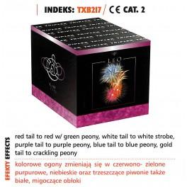 TXB 217 - LEO